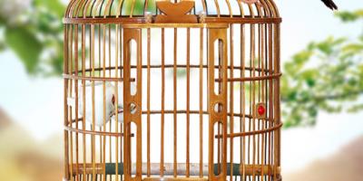 鸟笼有哪些品牌,鸟笼十大品牌排行榜推荐
